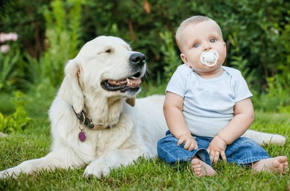 Mitos e verdades sobre o desenvovlimento dos bebês